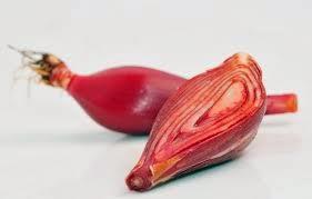 irisan bawang tiwai